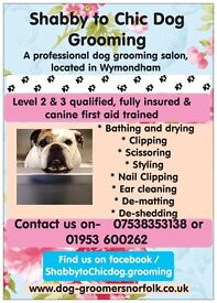 Shabby to Chic dog grooming and boarding