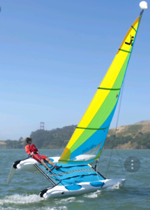 Iso catamaran with trailer