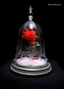 NorthClass Crystal/Glass White Rose Bell Jar(Beauty & The Beast)