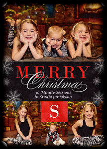 Christmas Mini's for $65.00 Windsor Region Ontario image 1