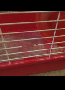 Bunny cage approx 39x20