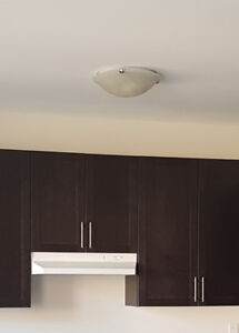 Ceiling Light Fixture with Frosted Glass (Brand New)