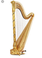 Looking for a harp player