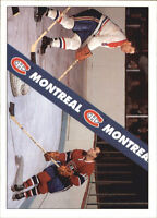Big hockey card lot from 80s 90s and 2000s