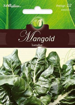 Mangold Lucullus weiß Stielmangold Samen 4460150
