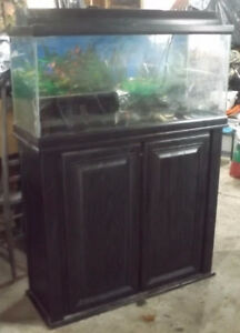 USED 30 Gal. FISH Tank & Stand FOR SALE - GREAT XMAS GIFT