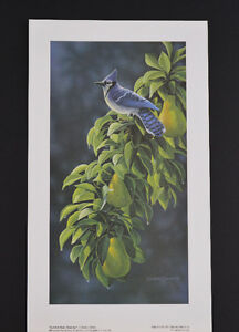 "Derek Wicks Limited Edition ""Summer Blue - Blue Jay"""