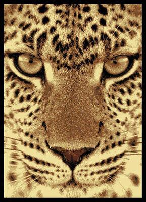 Cheetah Animal Print Rug - Safari Black Leopard Carpet 5x8 Cheetah Animals Area Rug : Actual 5' 3