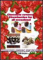 Chocolate covered strawberries for any occasion!!