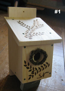 Tree Swallow nest box, bird house, Kits for kids, insect control
