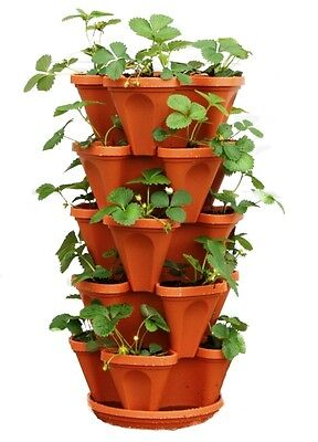 Vertical Garden Strawberry Herb Planter – Hanging Stacking Gardening Pots Gifts