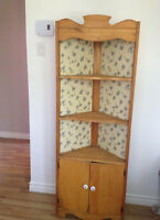 Unique Antique Bookcase