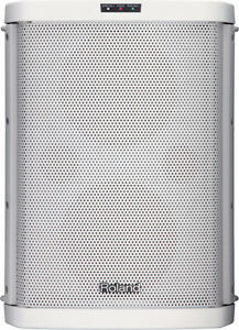 Roland BA 55 battery Powered Speaker Amplifier 2 wireless mic