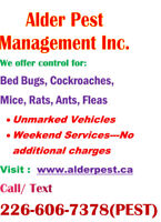 Pest Control Services-Cambridge, Kitchener, Waterloo, Brantford