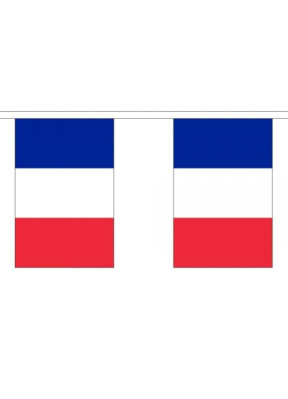 France Flag Bunting - 3m 6m 9m Metre Length 10 20 30 Flags - Polyester French