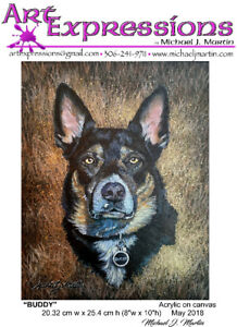 Pet Portraits - High Quality Professional Paintings