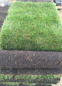Sod for Sale! From $0.30 a Sqft Delivered!