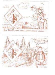 2 cartes postales Scout Jambore 80 Tamaracouta , Qué.