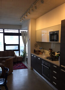 New and Beautiful 1BR Condo Heart of Trinity Bellwoods