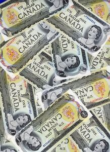 Canadian paper money $1 Dollar Bills (currency) bank notes