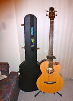 Takamine Acoustic/Electric Bass