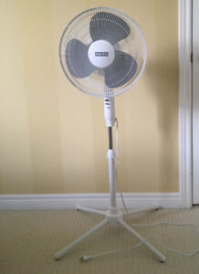 Standing Fan - Simple, Useful, Strong.