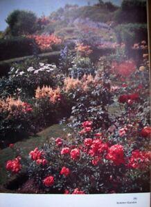 GARDENING ENCYCLOPEDIA  plus  3 Gardening Books