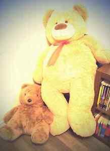 Giant Teddy Bair with Collectors Bear