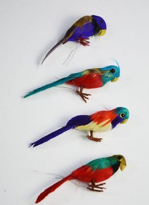Papagei Ara Vogel Hawaii Kostüm Südsee Karibik Blumen Piratenkostüm klein
