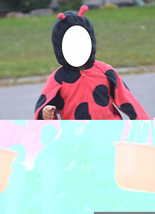 Lady Bug Costume - 24 months