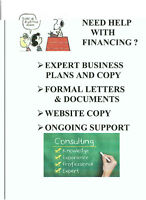 EXPERT BUSINESS PLANS, ETC. - BEST PRICES!
