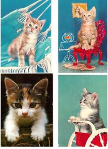12 cartes postales ; Chats et Chatons (cats)
