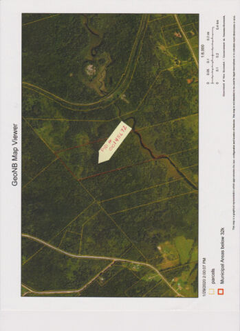 30-acre woodlot for sale at salt springs, nb
