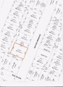 terrain a vendre Rue Des Ormeaux  Montreal
