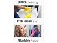 Domestic cleaning and home help