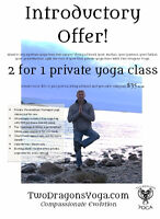 Back pain? Shoulder pain? Headaches? Try a private yoga class...