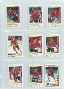 11 Different 1991-92 CHICAGO BLACK HAWKS STICKERS