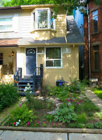 Newly renovated basement apartment on Degrassi Street