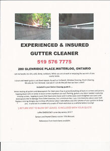 EXPERIENCED & INSURED GUTTER CLEANER,YARD CLEANUP & SNOW REMOVAL Kitchener / Waterloo Kitchener Area image 1