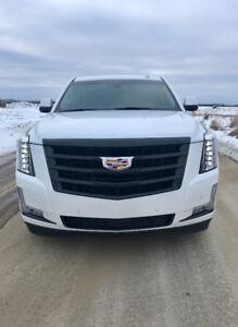 2016 Cadillac Escalade Premium SUV, Crossover