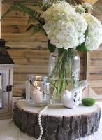 Wedding Decor to Rent