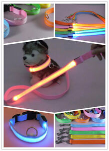 LED DOG COLLAR AND LED LEASH SET SALE BRAND NEW BARGAIN PRICES