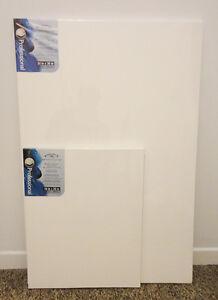Deux toiles Winsor et Newton Pro + cadre