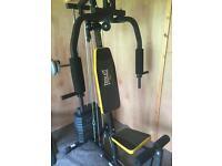 Everlast Home Gym