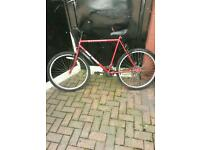GENTS EXPLORER TORNADO BIKE 15 SPEED