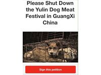 Please help wipe out the dog meat trade
