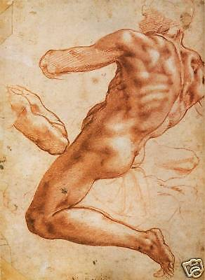 Michelangelo:Sistine Chapel Drawings: 4 Fine Art Prints