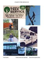 For all your tree service needs