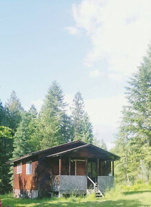 One Bedroom House in Slocan Valley