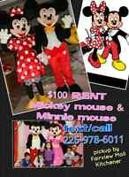 Mickey mouse and minnie mouse mascot cartoon character rental